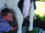 Dairy days June 2015 at the Casey County Bank
